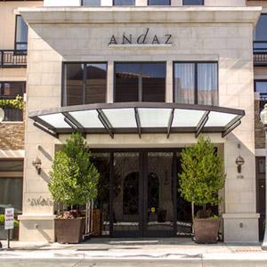 Andaz Hotel Bedding By DOWNLITE