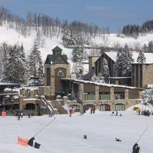 Seven Springs Mountain Resort Bedding by DOWNLITE