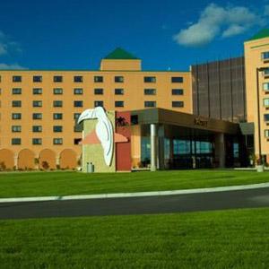 Treasure Island Casino Resort Bedding By DOWNLITE