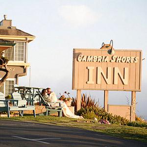 Cambria Shores Inn Bedding By DOWNLITE