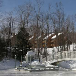 Lafayette Nordic Village Bedding By DOWNLITE