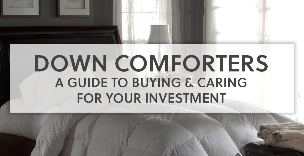 Down Comforter Guide